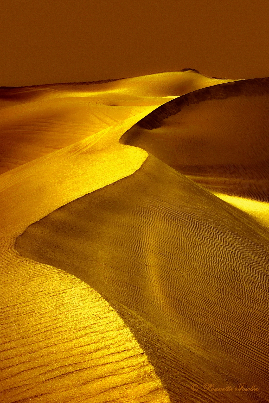 dunes-of-gold